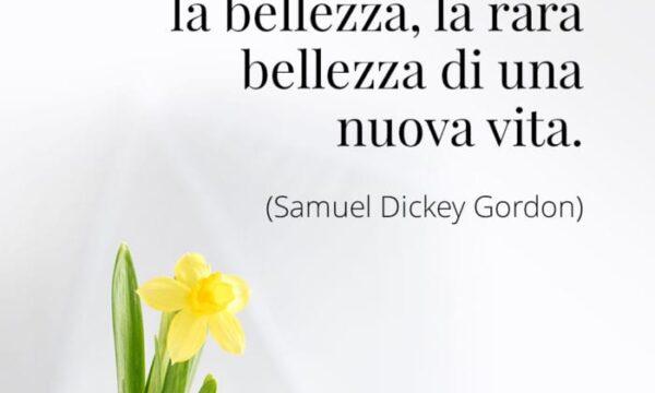 PENSIERI DI VITA: La Pasqua enuncia la bellezza, la rara bellezza di una nuova vita